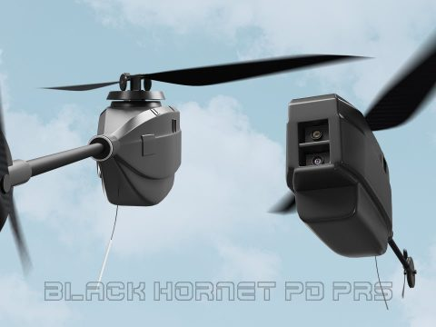 PD-100 Black Hornest